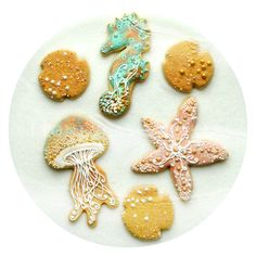 Honeycat Cookies ~ Seaside, sealife, jellyfish, starfish, seahorse, seastar, edible sand cookie set