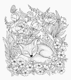 Sleeping Fox From My Upcoming Coloringbook Release Of March Just A Few Days Left Now