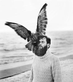 Even birds love the beard