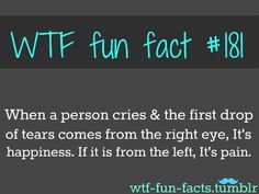 wtf fun facts - Google Search.....seriously have to pay attention & see if this is real