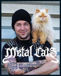 """Buch* Metal Cats. Bildband �ber die schnuckeligen Katzen der Metal Szene und ihre """"b�sen"""" Besitzer."""