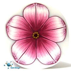 Pink burgundy flower cane