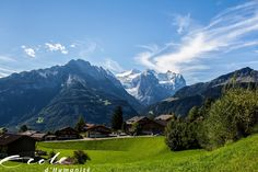 My school in the middle of the gorgeous Swiss Alps [2048  1365]