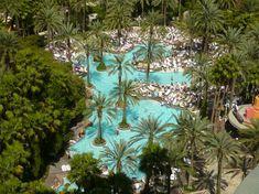 Flamingo pool, Las Vegas