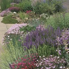 Soft Colors Inferno Strip Pre-Planned Garden | | Low Water Plants, Eco Friendly Landscapes | High Country Gardens