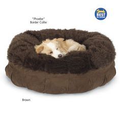 Animals Matter Mod Fur Nest Bed - Dog Beds, Gates, Crates, Collars, Toys, Dog Clothing & Gifts