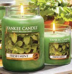 Yankee Candle - Fresh mint#YankeeCandle #MyRelaxingRituals