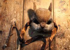 OOAK artesanal para arte bosque máscaras, máscaras de animales, tocado de fiesta, máscara, máscara de carácter animal...