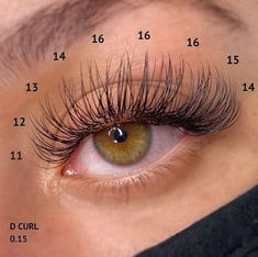 Wispy Eyelashes, Perfect Eyelashes, Natural Fake Eyelashes, Big Lashes, Eyelash Extensions Classic, Volume Lash Extensions, Natural Looking Eyelash Extensions, Eyelash Studio, Eye Makeup