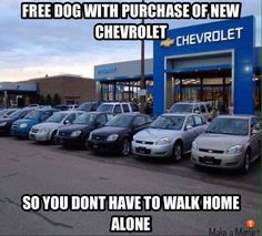 IMAGINE THAT! A free dog with purchase of a new Chevrolet. so you don't have to walk alone! Funny Truck Quotes, Truck Memes, Funny Car Memes, Truck Humor, Ford Truck Quotes, Car Quotes, Funny Humor, Ford Humor, Ford Jokes