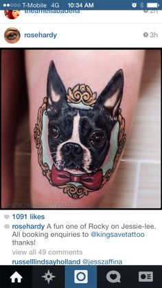 Dog tattoo Boston terrier