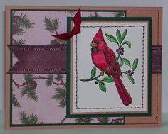 SC204 Cardinal Christmas 11-29-08