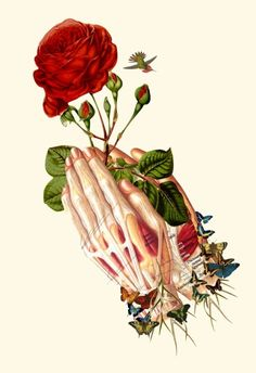 "Illustration - illustration - bedelgeuse: """"forgiven"" anatomical collage art by Bedelgeuse "" illustration : – Picture : – Description bedelgeuse: """"forgiven"" anatomical collage art by Bedelgeuse "" -Read More – Arte Com Grey's Anatomy, Human Anatomy Art, Medical Art, Collage Artwork, A Level Art, Art Inspo, Cool Art, Art Projects, Art Drawings"