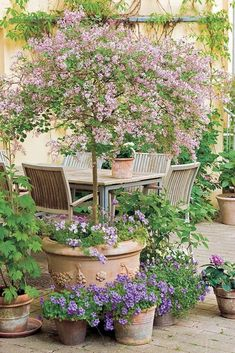 Small courtyard gardens - 37 Fresh Cottage Garden Ideas for Front Yard and Backyard Inspiration – Small courtyard gardens Unique Garden, Small Garden Design, Diy Garden, Dream Garden, Small Garden Oasis, Garden Design Ideas, Small Garden Inspiration, Garden Projects, Pocket Garden Small Spaces