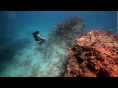 Underwater wheelchair!