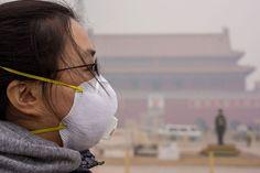 China's `Inconvenient Truth' Creates Environmental Billionaires