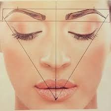 ผลการค้นหารูปภาพสำหรับ golden ratio face
