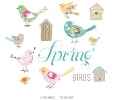 CLIP ART  - Spring Birds - for commercial and personal use. $8.00, via Etsy.