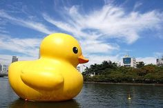 Artist Florentijn Hofman has created a gigantic yellow rubber duckie and sent it floating down the Loire River in France, where the temporary sculpture brings a smile to the faces of all the people it passes.