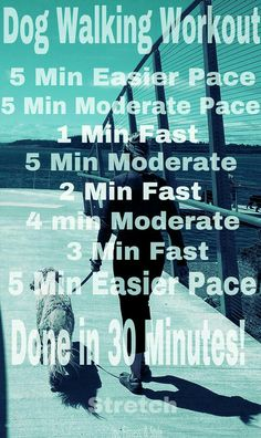 A 30 Minute Workout. Take your dog with you for a walk.