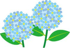 Image result for green hydrangea