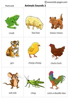 Animals Sounds 2 flashcard
