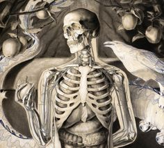 Michael Reedy is a figurative artist and Medical illustrator who now teaches at EMU.
