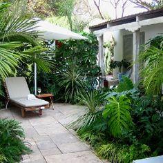 contemporary rustic coastal courtyard: Garden by Young Landscape Design Studio Modern Landscape Design, Landscape Plans, Contemporary Landscape, Tropical Landscaping, Modern Landscaping, Backyard Landscaping, Tropical Patio, Tropical Garden Design, Landscaping Software