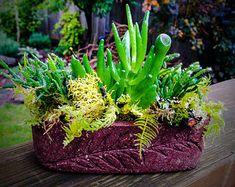Hypertufa Baskets by LivingStonesGardens on Etsy