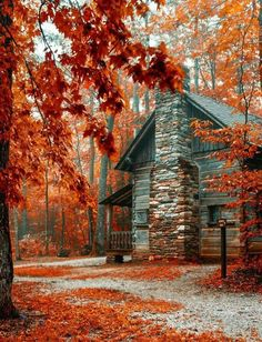 Cabin in Fall