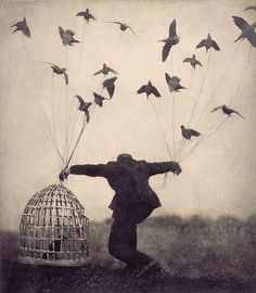 The Architect's Brother series by Robert and Shana ParkeHarrison #photography