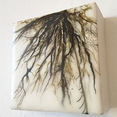 Back to my roots. Little concept piece. #art #encaustic #aliciatormey #fineart #organic #roots | by Alicia Tormey