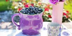 Everybody knows they should be eating their fruits, or at least, some fruit every day, but do you know when to eat them? Learn all about HOW and WHEN to eat fruits to get the most benefits :) Weight Loss Tea, Best Weight Loss, Lose Weight, Superfoods, Pantone, Photos Free, The Tiny Seed, Going Vegetarian, Summer Fruit