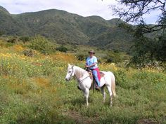 Enjoying the flowers on a trail ride.