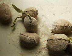 Tamar Morgendorff - root vegetables
