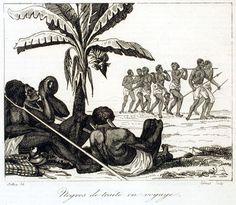 Slave Coffle, Senegambia, early 19th cent.