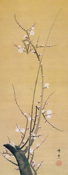 (Japan) White plum tree by Suzuki Kiitsu.