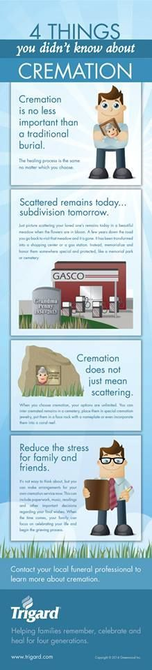 4 Things You Didn't Know about Cremation (Great infographic from Trigard) Funeral Planner, Green Funeral, When Someone Dies, Funeral Memorial, Funeral Arrangements, End Of Life, Life Plan, Cremation Urns, Bereavement