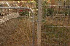 Cheap Easy Dog Run to Build : 6 Steps - Instructables Diy Dog Run, Diy Dog Fence, Portable Dog Kennels, Cheap Dog Kennels, Wooden Dog Crate, Dog Kennel Cover, Thing 1, Dog Runs, Dogs
