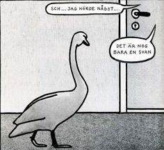 Jan Stenmark -  bara en svan