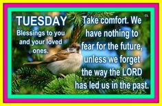 Tuesday Blessings to You & Your Loved Ones...
