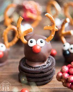 Christmas Truffles, Christmas Food Gifts, Homemade Christmas, Christmas Desserts, Christmas Baking, Christmas Fun, Christmas Cookies, Christmas Recipes, Reindeer Christmas