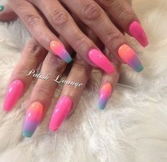 Rainbow serbert