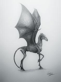 Harry Potter Sketch, Images Harry Potter, Harry Potter Drawings, Harry Potter Books, Harry Potter Fan Art, Mythical Creatures Art, Mythological Creatures, Thestral Tattoo, Vogel Illustration