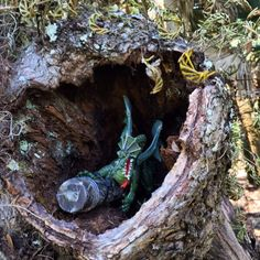 Geocaching hide. #geocaching #geocache #cache