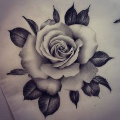 ...and another one. Would love to tattoo some more realistic roses. Let me know if you're interested!: