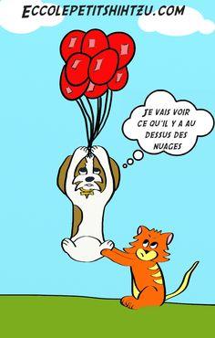 ecco-leo-ballon