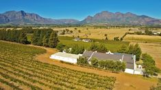 Lifestyle Wine Estate of & Venue Facility - Located Between Paarl & Franschoek Golf Estate, Luxury Property For Sale, Places Of Interest, Maine House, Real Estate Marketing, Golf Courses, Country Roads, Cottage, Explore