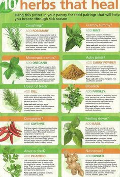 10 Herbs That Heal: Are you growing these in your garden? (Pinning it here just because it pertains to healing.)