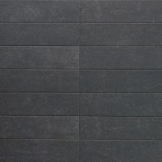 "Ivy Hill Tile Sanskrit 4"" x 19"" Porcelain Pattered Subway Wall & Floor Tile | Wayfair Tile Floor, Shower Floor, Bathroom Flooring, Kitchen Flooring, Sanskrit, Wall Tiles, Subway Tiles, Tile Saw, Commercial Flooring"